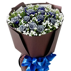 藍色魅力-11支精品藍色妖姬
