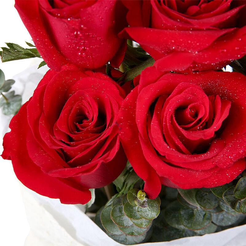 愛情誓約-19支精品紅玫瑰