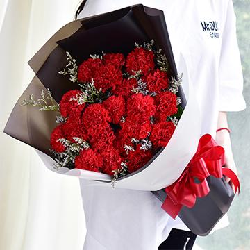 溫馨思念-19支紅色康乃馨