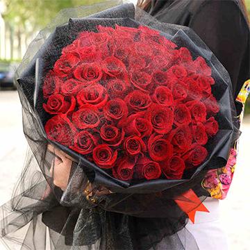 千言萬語-66支精品紅玫瑰