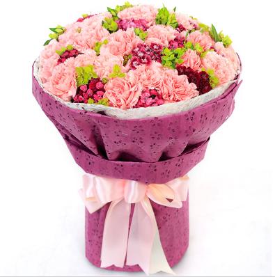 母亲节康乃馨花语