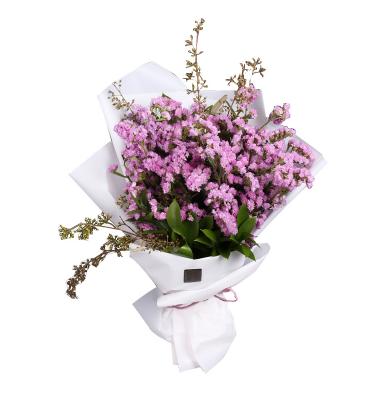 什么花代表友情和祝愿