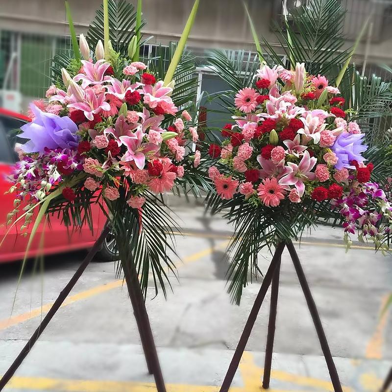 处处皆春鲜花