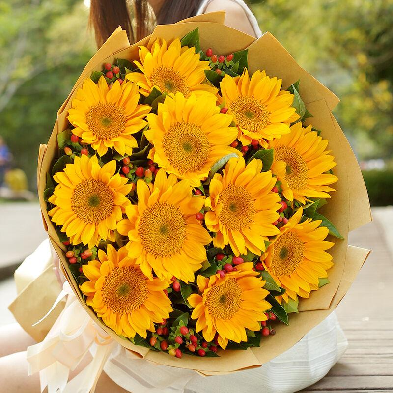 梦想启程-11支精品向日葵鲜花