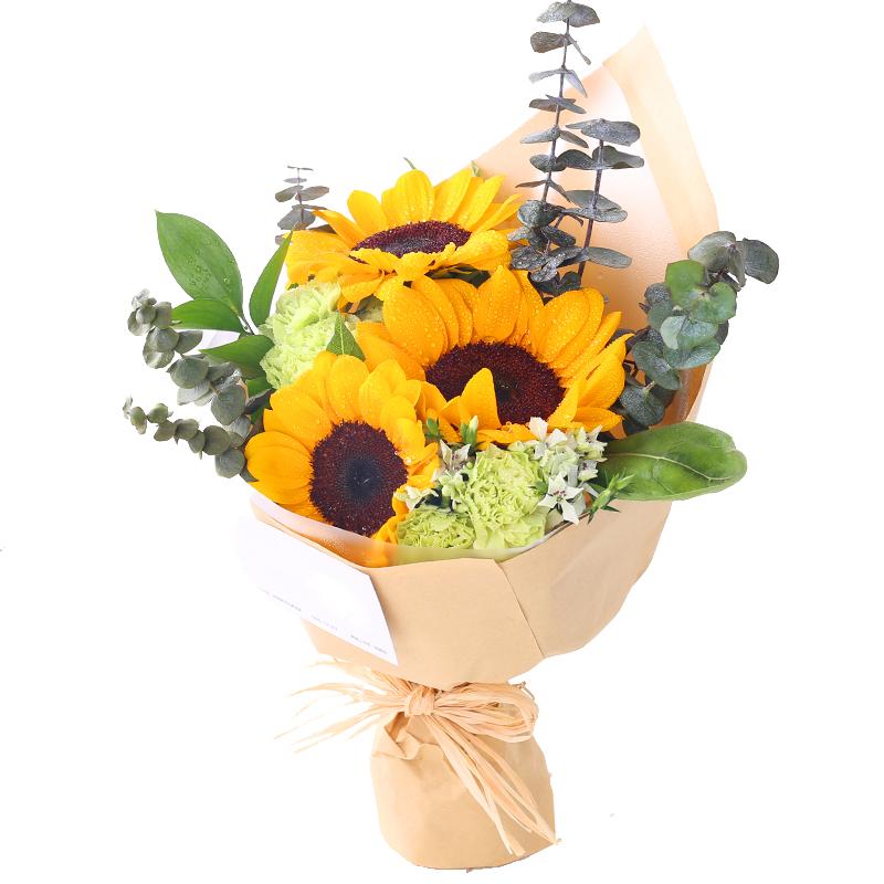 暖暖的爱-3支精品向日葵+4支康乃馨鲜花