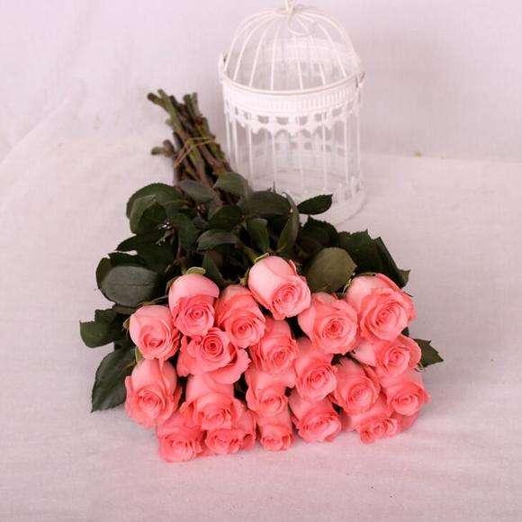 上海花店戴安娜玫瑰花语是什么呢