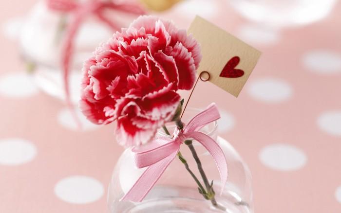 十二星座圣诞节*适合送什么鲜花