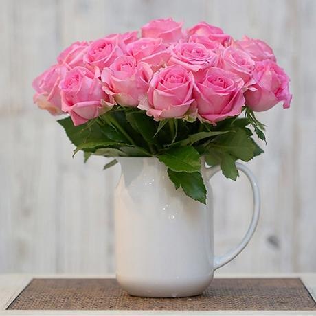 玫瑰花如何养?玫瑰花保鲜方法