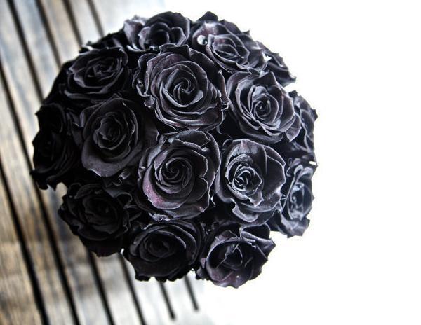 黑玫瑰花语及代表意义是什么