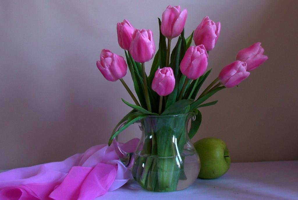 紫色郁金香什么花语_紫色郁金香适合送给什么人