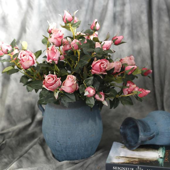 保加利亚玫瑰花的花语是什么