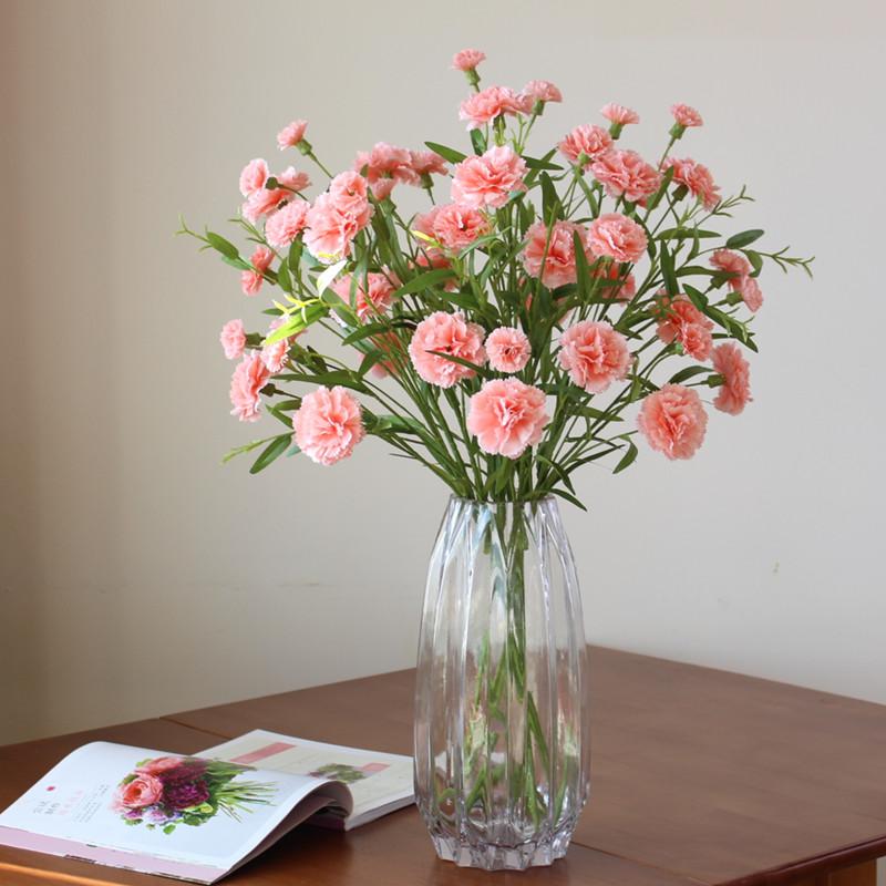 如何让盆栽康乃馨活的更久