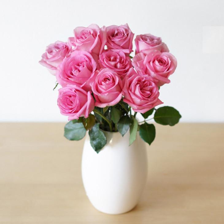 玫瑰的栽培管理方法都有哪些