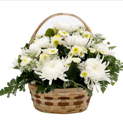 为什么去上坟要9朵菊花