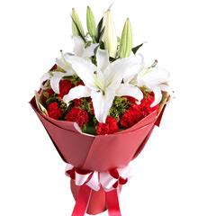 送花给爷爷奶奶,哪些鲜花可以送