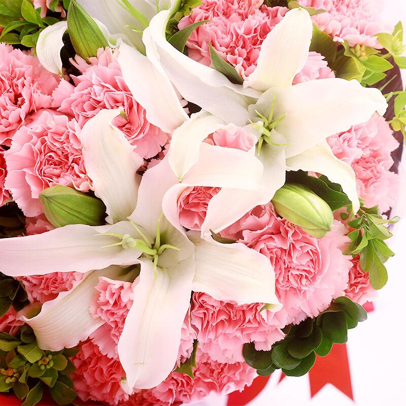 似锦前程-19支粉色康乃馨