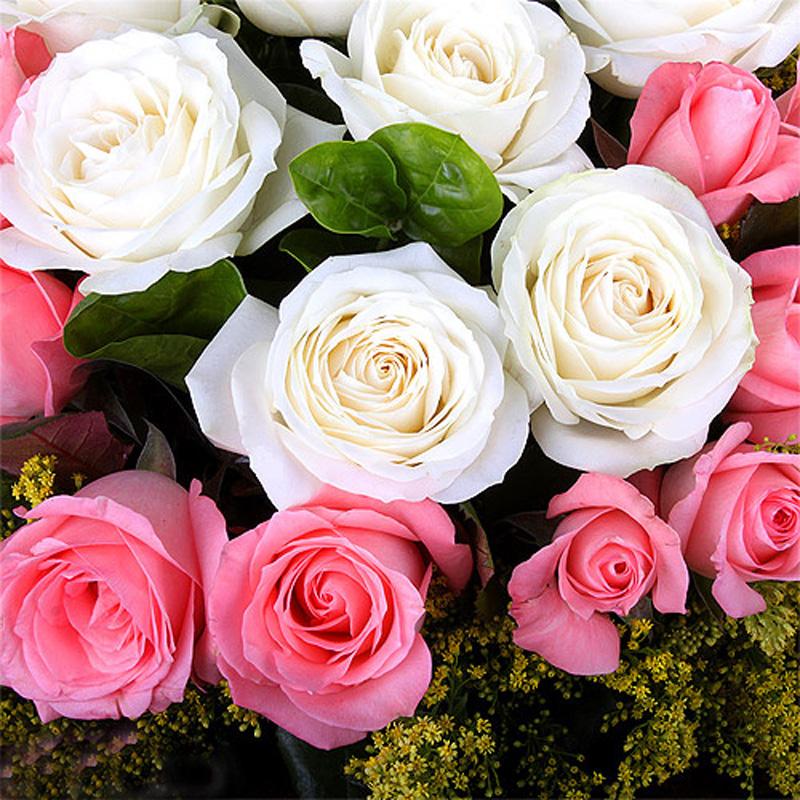 想你在心中-19支亚博国际电游app混色玫瑰