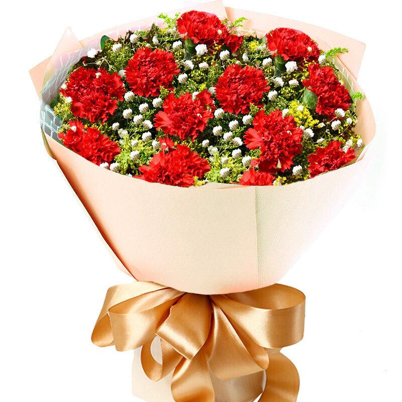 伟大的爱-11支精品红康乃馨