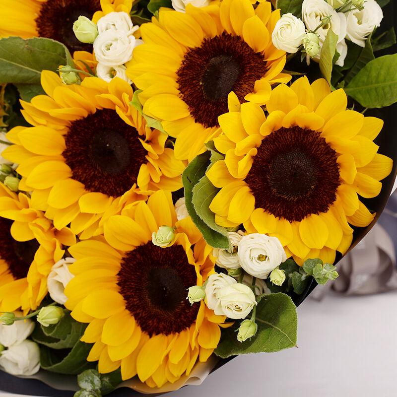 爱是阳光-10支精品向日葵