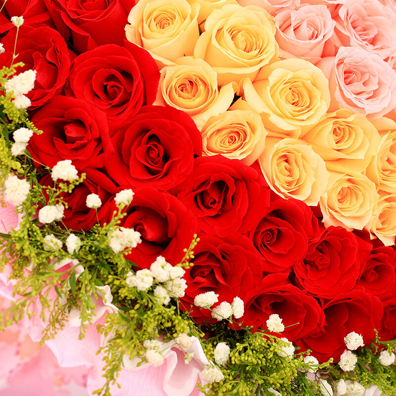 天生一对-99支精品混色玫瑰