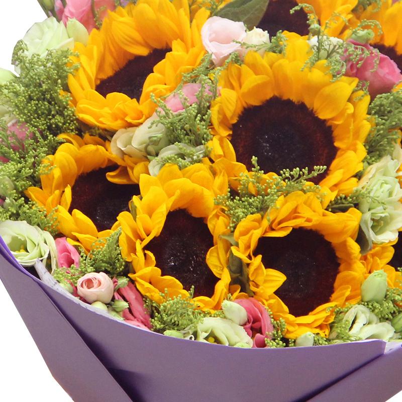 健康活力-9支精品向日葵