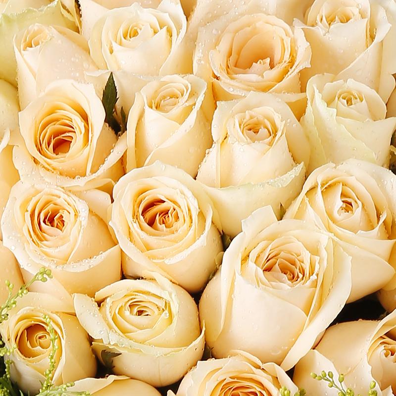 梦中花-33支精品香槟玫瑰