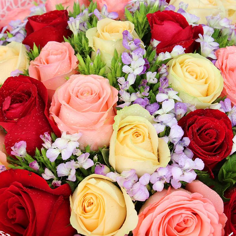 暖暖心意-33支精品混色玫瑰