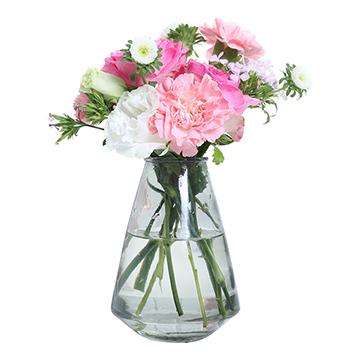 继续奔跑-康乃馨+玫瑰+小雏菊混搭