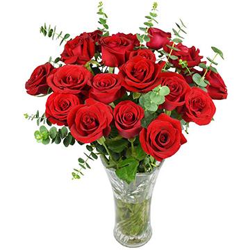爱生活-19支亚博体育官方通道红玫瑰
