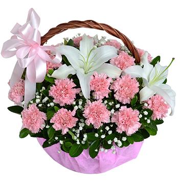 深情问候-22支亚博体育官方通道粉色康乃馨+百合