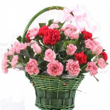 绽放的幸福-27支混色康乃馨+6支玫瑰