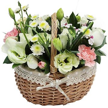 活泼俏皮-6支白玫瑰+6支粉康乃馨