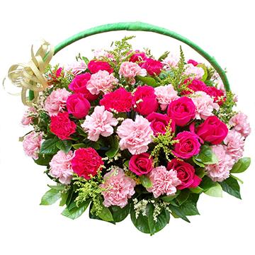 祝福-38支混色康乃馨+11支玫瑰