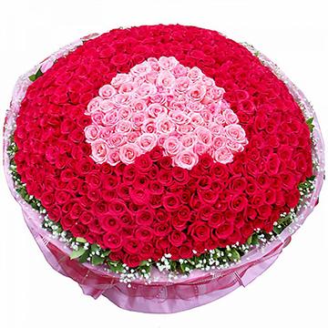 心的悸动-365支精品混色玫瑰