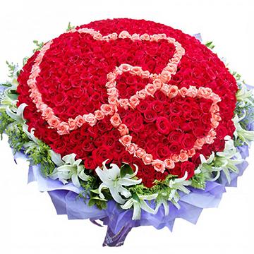 心心相印-365支精品红玫瑰
