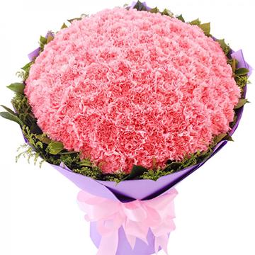 爱妈妈-99支亚博体育官方通道粉色康乃馨