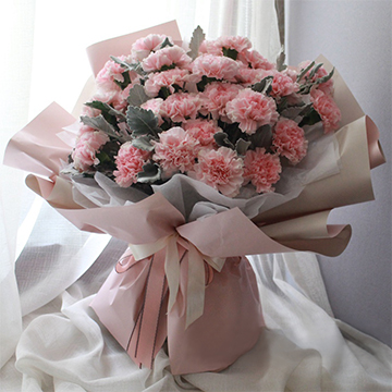 心存感激-33支精品粉色康乃馨