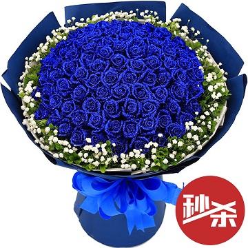 天涯海角-99支精品蓝色妖姬