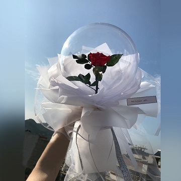 愿得一人心-小王子同款告白气球单支红玫瑰花束