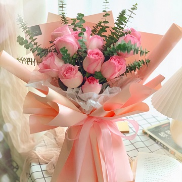 纯洁美丽-11支精品粉玫瑰